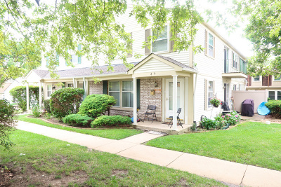 Schaumburg Condo/Townhouse For Sale: 609 Kendall Court #609