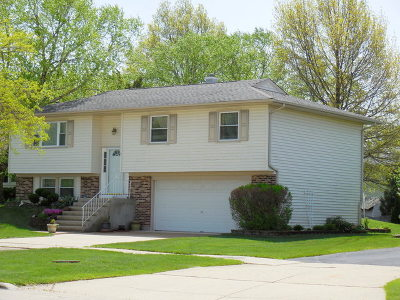 Hoffman Estates Single Family Home For Sale: 1215 Freeman Road