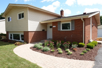 Arlington Heights Single Family Home For Sale: 1301 East Euclid Avenue
