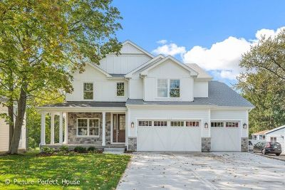 Downers Grove Single Family Home For Sale: 1923 Hitchcock Avenue