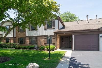 Schaumburg Condo/Townhouse For Sale: 226 Brookston Drive #C1