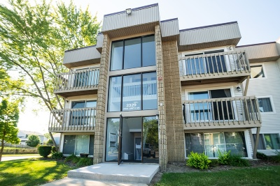 Schaumburg Condo/Townhouse For Sale: 2329 John Smith Drive #F