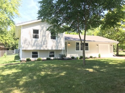 Glen Ellyn Single Family Home For Sale: 22w435 Sycamore Drive