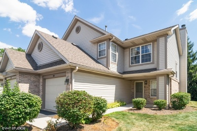 Schaumburg Condo/Townhouse For Sale: 1949 Lilac Court