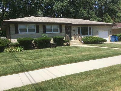 South Holland Single Family Home For Sale: 17120 Wausau Avenue