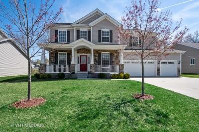 Lake Villa Single Family Home For Sale: 9 Lake Vista Court