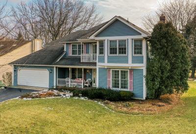 Naperville Single Family Home For Sale: 716 West Gartner Road