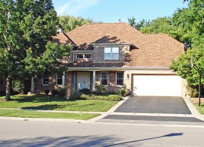 Mundelein Single Family Home For Sale: 350 Ambria Drive