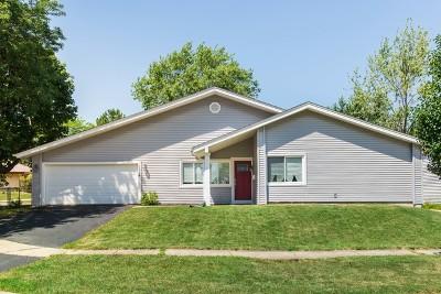 Hanover Park Single Family Home For Sale: 1524 Turner Lane