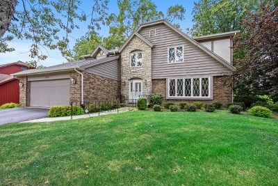 Downers Grove Single Family Home For Sale: 8112 Woodcreek Court