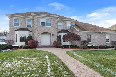 Buffalo Grove Single Family Home For Sale: 2870 Dunstan Lane