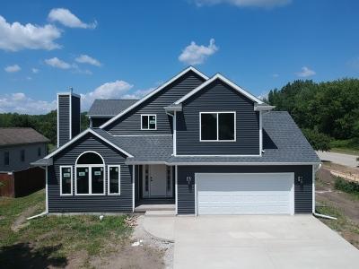 Braidwood Single Family Home For Sale: 906 West 1st Street