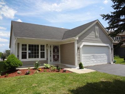 Mundelein Single Family Home For Sale: 2125 Clarewood Lane