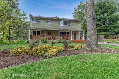 Mundelein Single Family Home For Sale: 1353 Dairy Lane