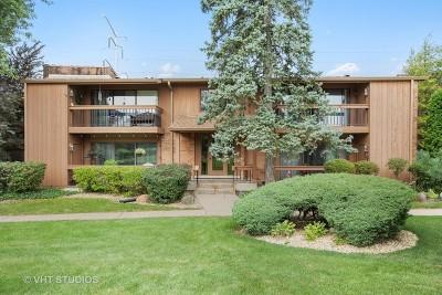 Burr Ridge Condo/Townhouse For Sale: 8066 Garfield Avenue #11-3