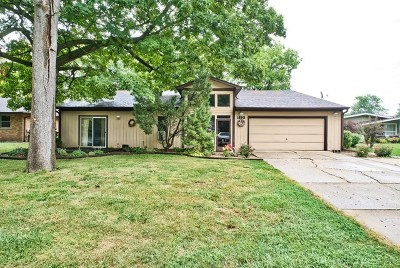 Aurora Single Family Home For Sale: 1895 Connie Court