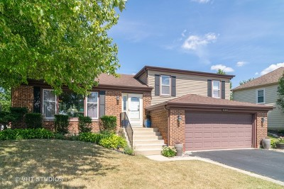 Roselle Single Family Home For Sale: 1180 Hygate Drive