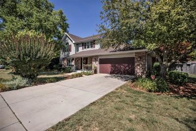 Joliet Single Family Home For Sale: 1006 Erins Glen Drive