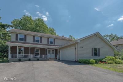 Roselle Single Family Home New: 413 South Roselle Road