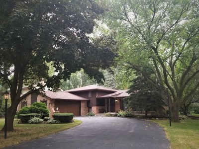 Downers Grove Single Family Home For Sale: 8111 Winter Cir Drive