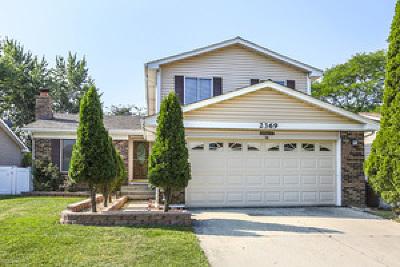 Woodridge Single Family Home New: 2369 Vista Drive