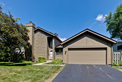 Roselle Single Family Home For Sale: 564 Acadia Trail