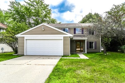 Vernon Hills Single Family Home For Sale: 103 Asheville Court