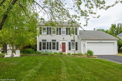 Mundelein Single Family Home For Sale: 954 Thomas Boulevard
