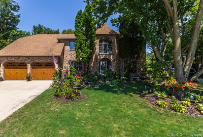 Shorewood Single Family Home For Sale: 802 Cornell Court