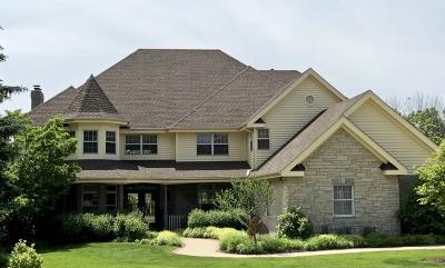 Mokena Single Family Home For Sale: 11437 Swinford Lane