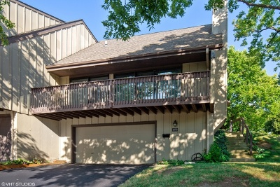 Elgin Condo/Townhouse For Sale: 1098 Florimond Drive