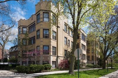 Evanston Condo/Townhouse New: 131 Kedzie Street #2