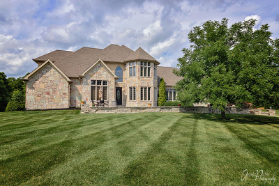 McHenry Single Family Home For Sale: 2007 Bull Ridge Drive