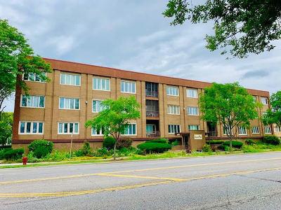 Oak Lawn Condo/Townhouse New: 10048 South Pulaski Road #2E
