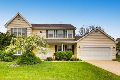 Hoffman Estates Single Family Home For Sale: 1600 Camelot Lane