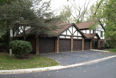 Palos Hills Condo/Townhouse For Sale: 11318 Sycamore Lane #68C