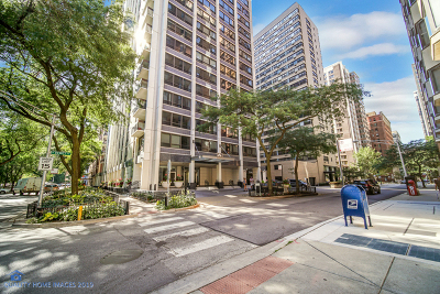 Streeterville, Gold Coast Galleria Condo/Townhouse For Sale: 222 East Pearson Street #2009