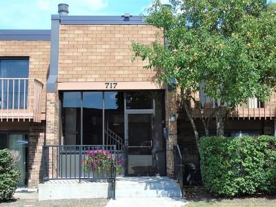 Schaumburg Condo/Townhouse New: 717 Tipperary Court #1C
