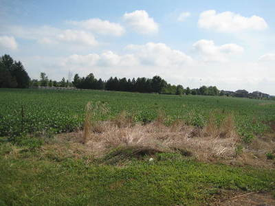 Joliet Residential Lots & Land For Sale: South Gougar Road