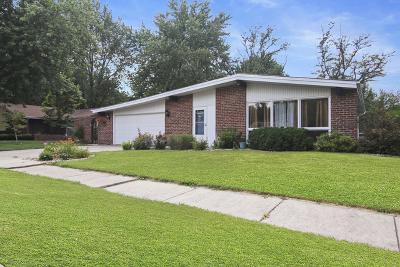 Bourbonnais Single Family Home For Sale: 651 Bisaillon Avenue