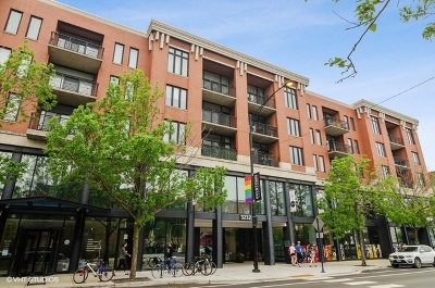 Condo/Townhouse For Sale: 3232 North Halsted Street #D1009