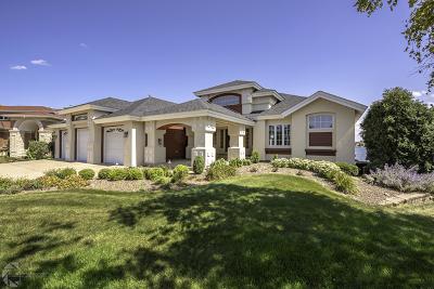 Plainfield Single Family Home For Sale: 13148 Merganser Cove