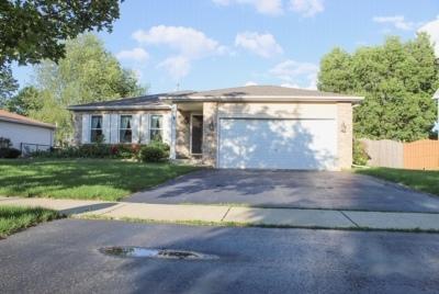 Bolingbrook Single Family Home For Sale: 192 Chestnut Lane