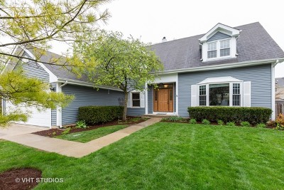 Vernon Hills Single Family Home For Sale: 313 Southgate Drive