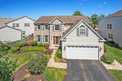 Romeoville Single Family Home New: 1844 Lake Shore Drive