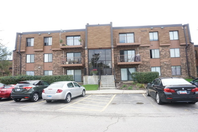 Schaumburg Condo/Townhouse For Sale: 707 Waterford Road #1B