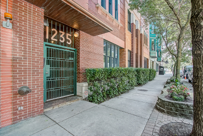 Chicago IL Condo/Townhouse New: $499,900