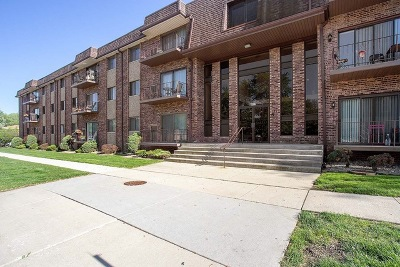 Hickory Hills Condo/Townhouse New: 8901 South Roberts Road #203
