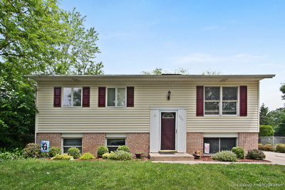 Bolingbrook Single Family Home For Sale: 224 Monterey Drive