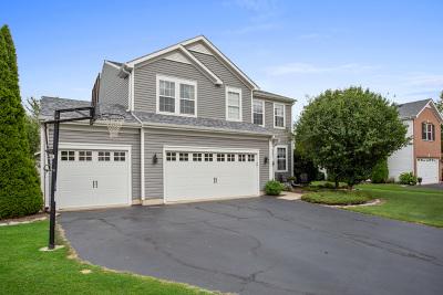 Hampshire Single Family Home For Sale: 327 White Oak Street